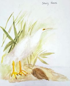 Joseph Law Bird Painting